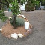 excavation-beacon-hill-15